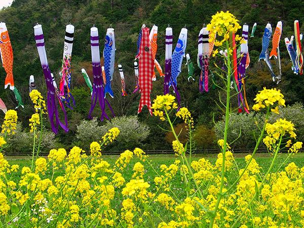 Tháng 5 – Tháng lễ hội ở Nhật Bản